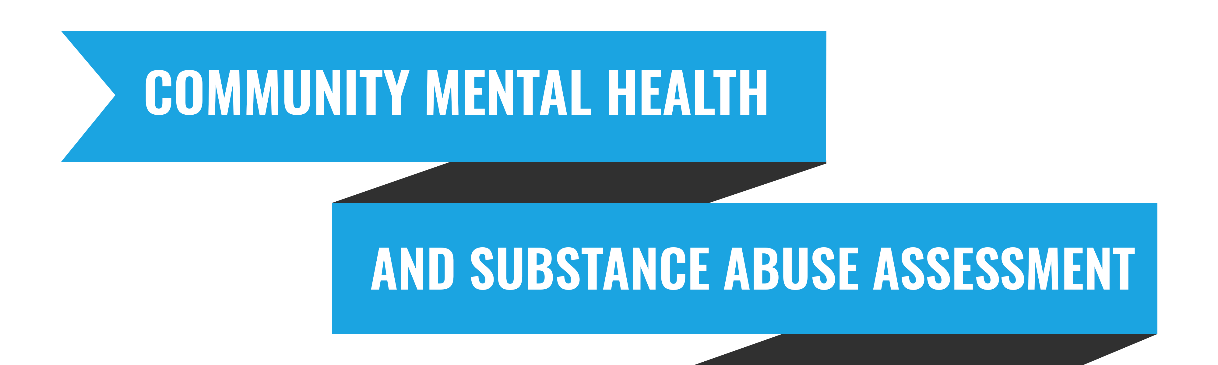 Community Mental Health and Substance Abuse Assessment